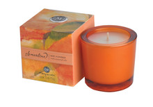 Clementine Soy Candle - NEW!