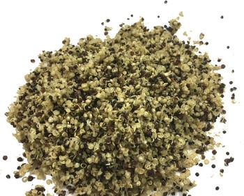 Quinoa Dried