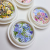 Mixed flowers, butterflies and bees (6 pieces)