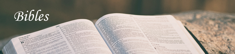 bibles-banner.jpg