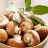 Wild Mushroom & Sage Olive Oil