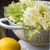 Elderflower White Balsamic Vinegar