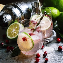 pic-2-cranberry-pear-shrub-copy.jpeg