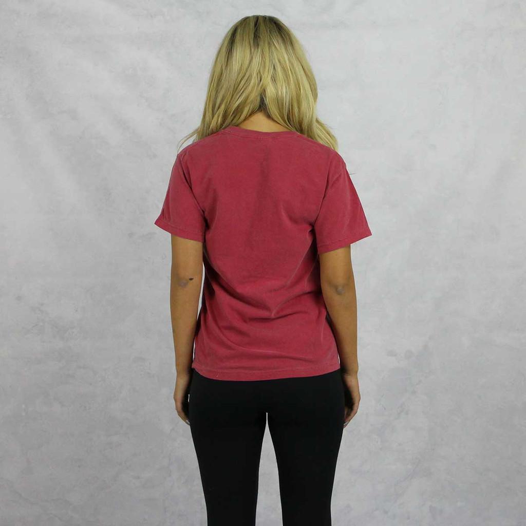 Pi Beta Phi Comfort Colors Pocket T-Shirt Back