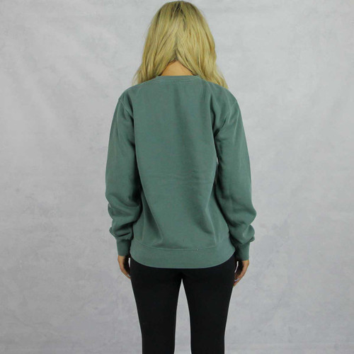 Pi Beta Phi Embroidered Sweatshirt in Green Back