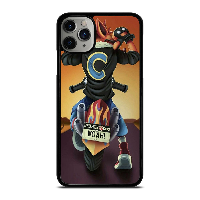 CRASH BANDICOOT FAN ART iPhone 11 Pro Max Case Cover