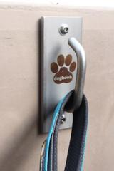 Doghook Standard - Stainless