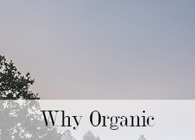 about-us-why-organic.png