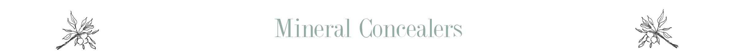 mineralconcealer.png
