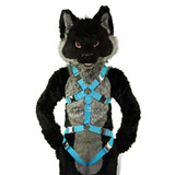 Standard Harness with Leg-Straps VER. 2