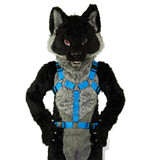 Y-Harness EXTENDED