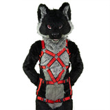 Full X-Chest Harness with Leg-Straps (Detachable) [2-colored]