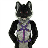 Standard Body Harness with Custom Embroidery