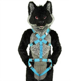 Standard Harness with Leg-Straps and Custom Embroidery