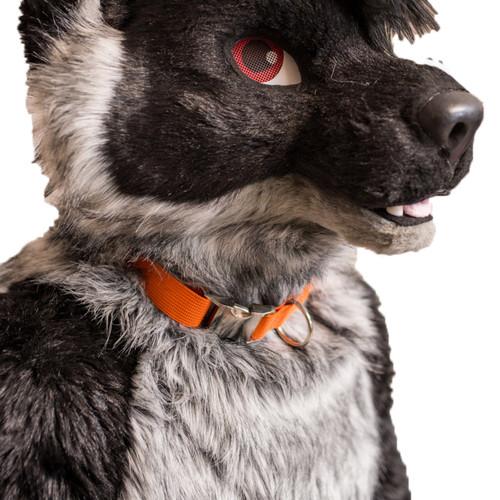 Fursuit Collar
