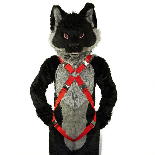 X-Harness with Leg-Straps