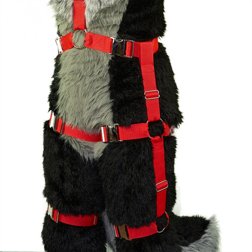 Harness Double Leg Attachment (for both legs)