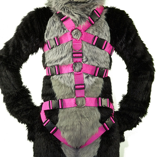 3-Strap Standard Harness with Leg Straps VER. 2