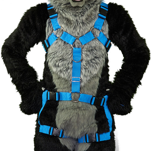 Y-Harness EXTENDED  with Leg-Straps (Detachable)