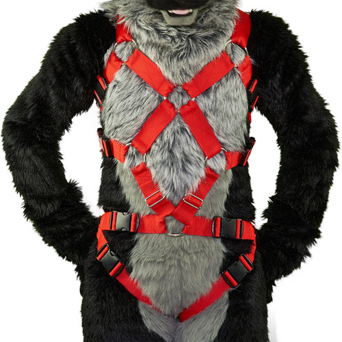 Full X-Chest Harness with Leg-Straps