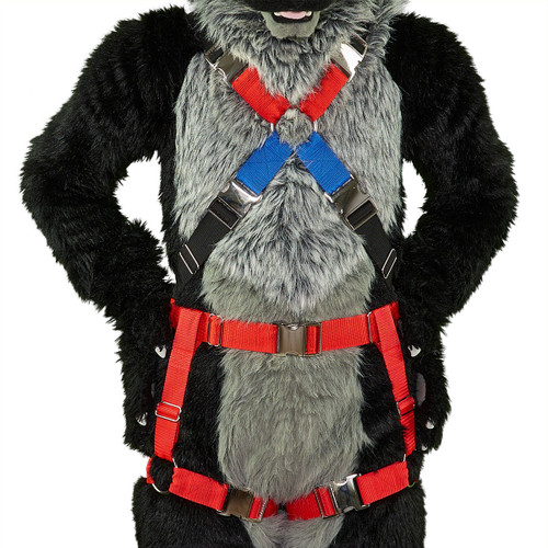 Full X-Harness with Leg-Straps (Detachable)