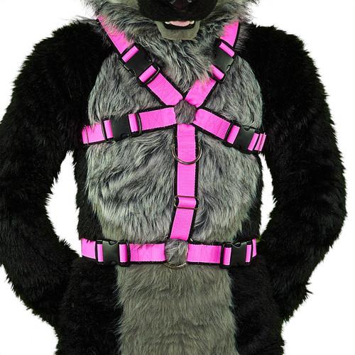 Standard Body Harness [2-colored]