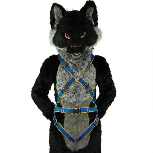 Full X-Harness with Leg-Straps [2-colored]