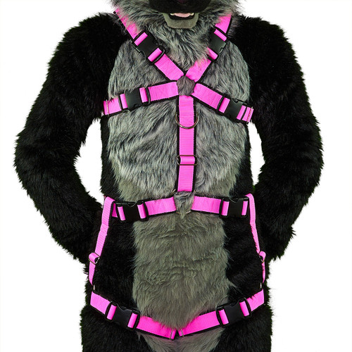 Standard Harness with Leg-Straps (Detachable) [2-colored]