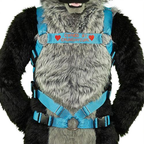 Full Bulldog Harness with Custom Embroidery