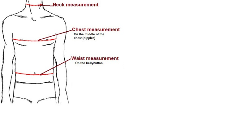 measurementsbodyhead2.jpg