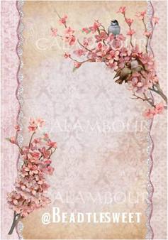 Calambour Rice Paper DGR219