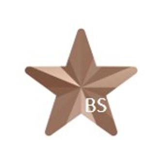 10mm Swarovski 4745 Crystal Rose Gold Rivoli Star Fancy Stone