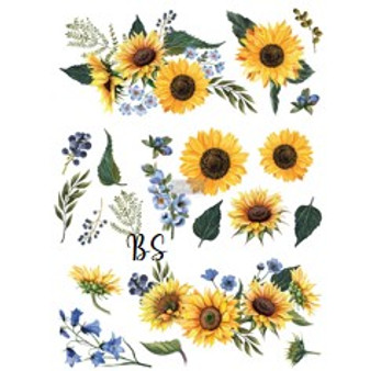 Redesign Transfer Sunflower Fields