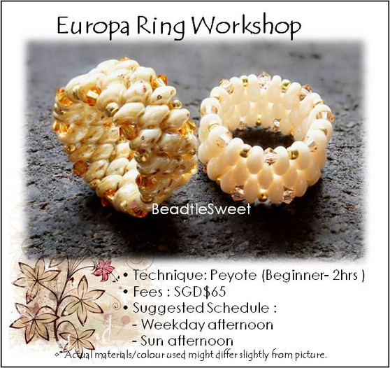 Europa Ring Workshop