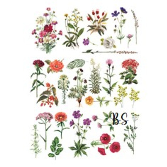 Redesign Transfer Floral Collection