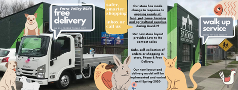 Our store has made change to Spring 2020!