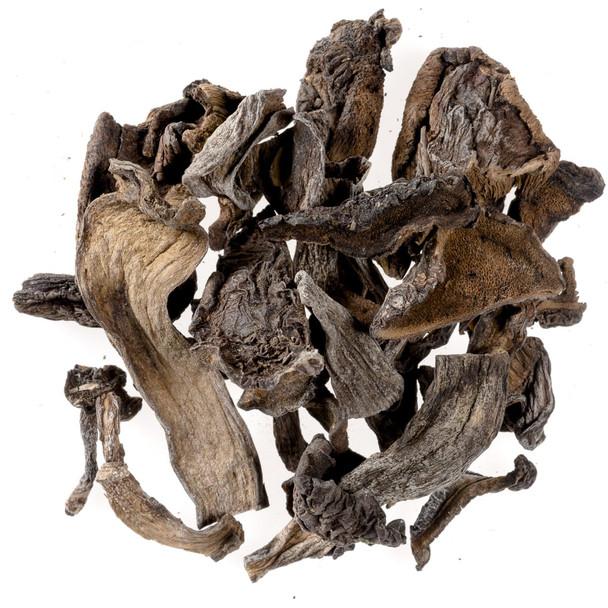 European Style Bolete Mushrooms, Dried