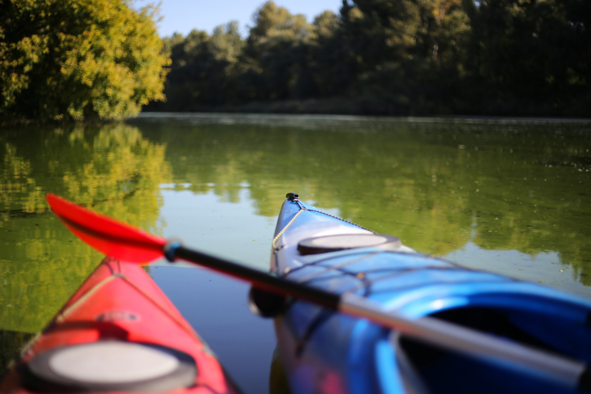 What to Bring on your Kayak Adventure