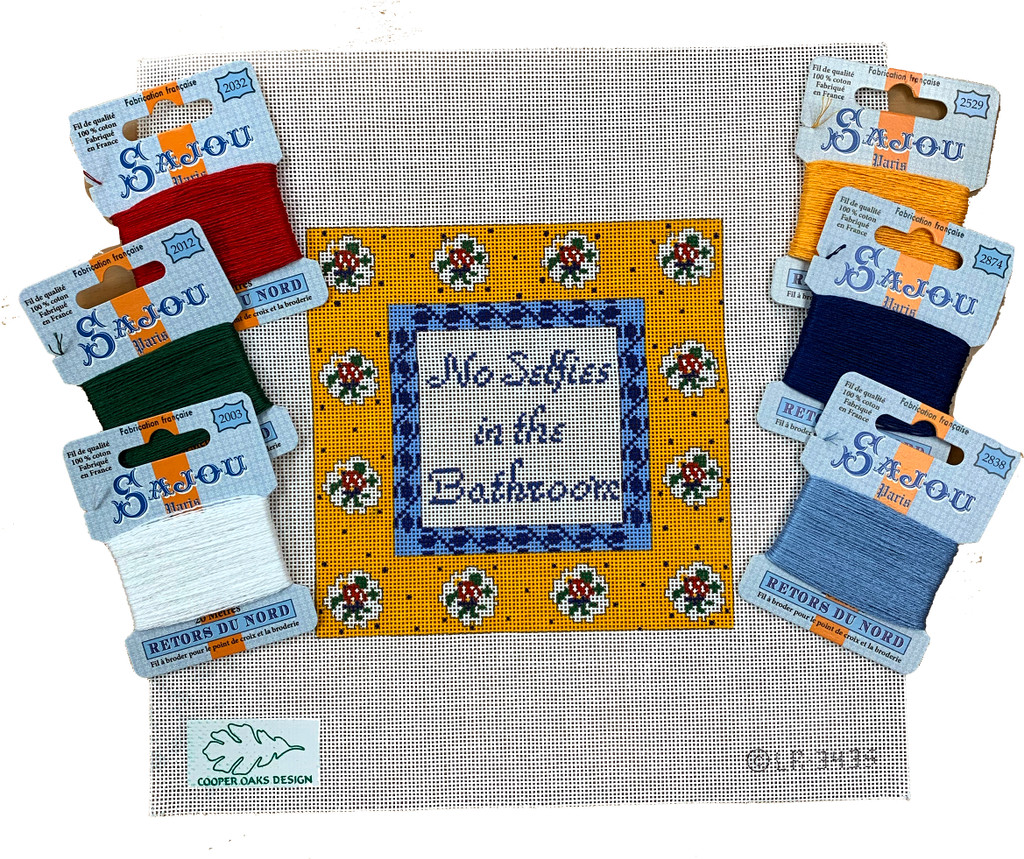 No Selfies in the Bathroom - Needlepoint Kit