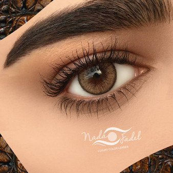 Nada Fadel Bee Contour Lenses - One Box Two Lenses
