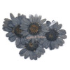 Grey Daisy Pressed Real Dried Flowers (6 pieces)