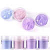 Extra Fine Iridescent Purple Shade Glitter Set (4 pieces)