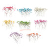 Baby's Breath Dried Flowers (12 pieces)