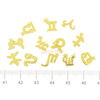 Zodiac Signs Metal Embellishment Inclusions (12 pieces)
