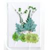 Green Dried Flowers Assortment