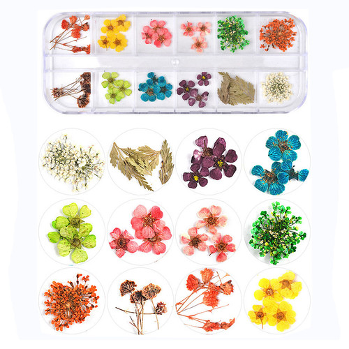Dried Assorted Flowers and Leaves with Container