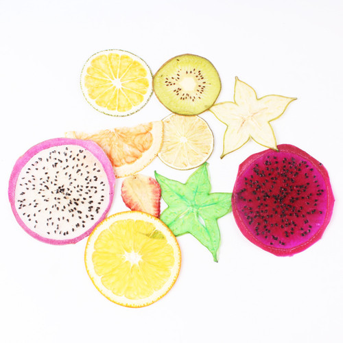 Dried Fruit Slices Embellishments (1 piece)