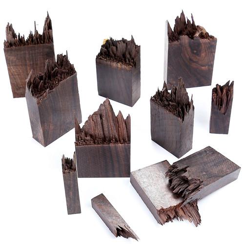 Enchanted Dark Wood for Resin Craft