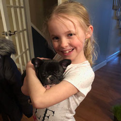 Young girl holds small french bulldog