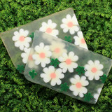 Daisy Soap